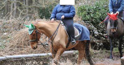 Maltrato a caballo