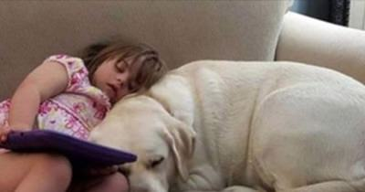 perros con niños con sindrome de down