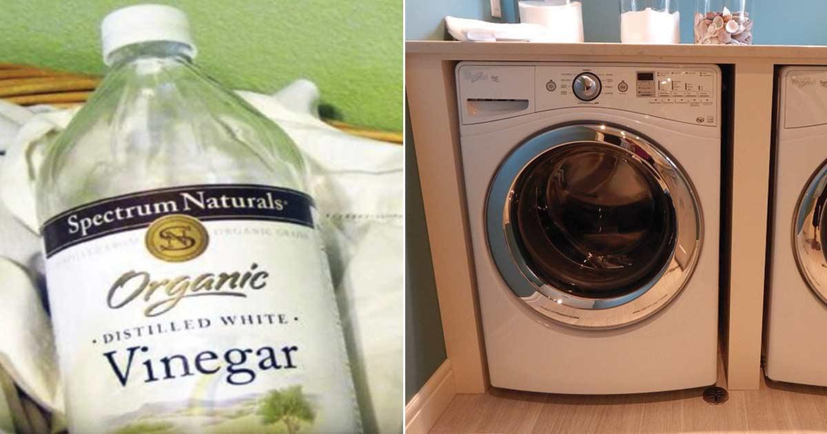 ropa, vinagre, lavar
