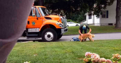 Garbage man and dog