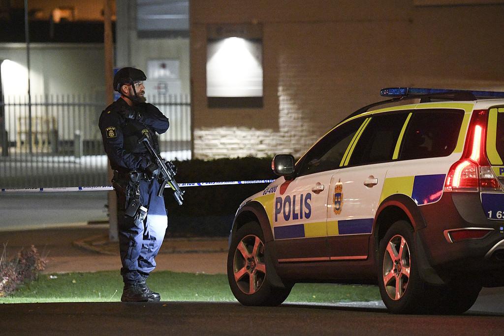 Fler poliser och kameraövervakning i samhället – nu ställer svenska seniorer krav