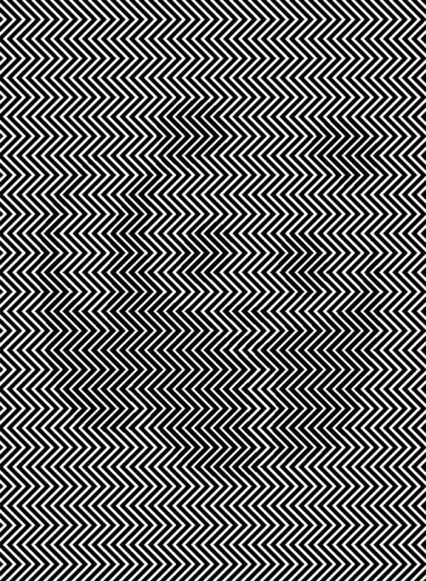 panda, optisk illusion