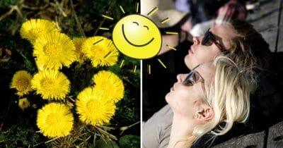 våren, smhi