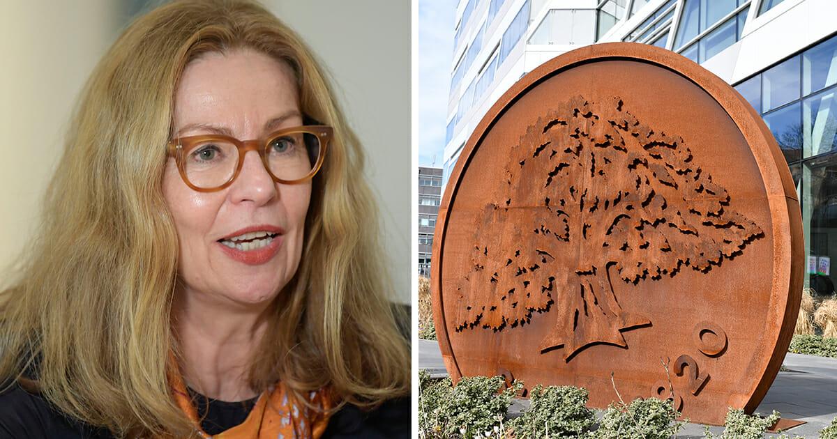 Swedbank-vd:ns fallskärm – blir ännu högre: Får 31 miljoner kronor