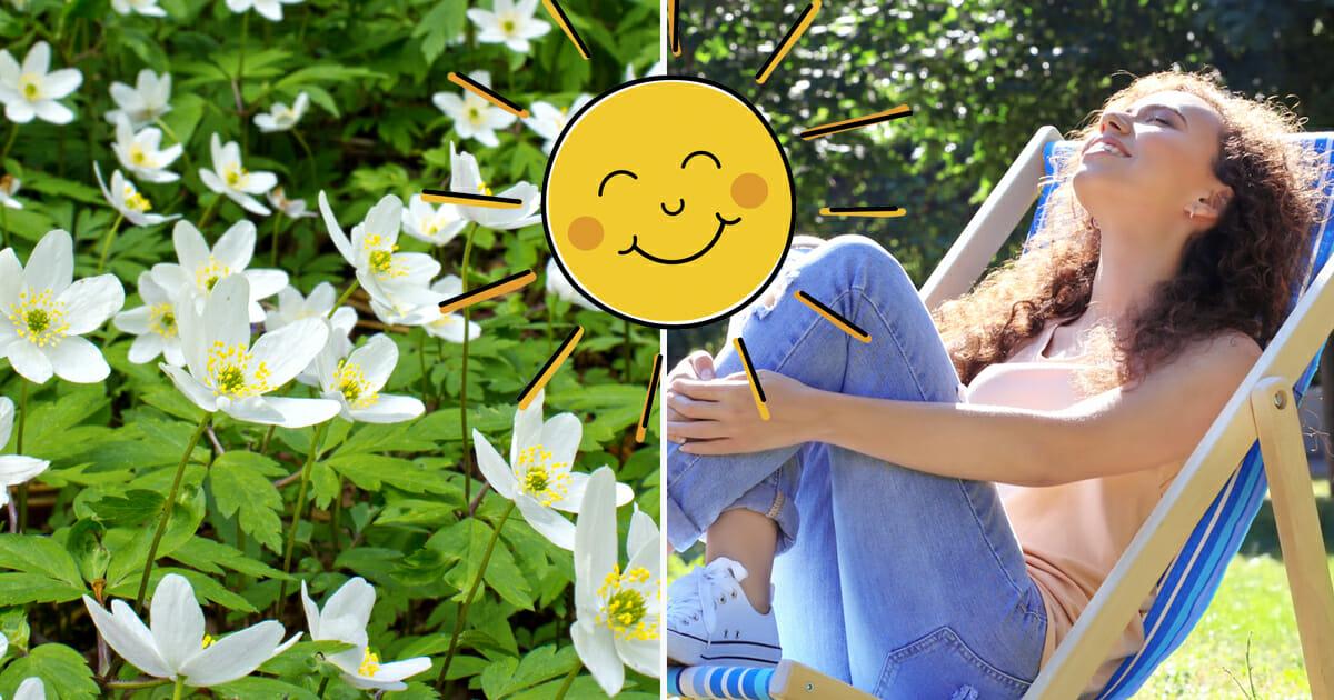 Våren blir varmare än normalt