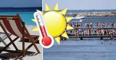 sommar, sol, värme