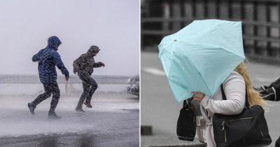 smhi, varning, oväder, storm, höst