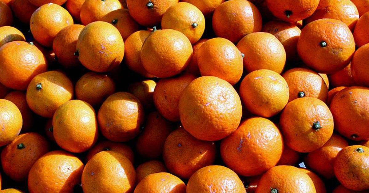 Clementiner eller satsumas?