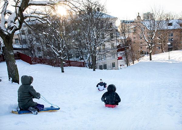 snö, pulka, lek, vinter