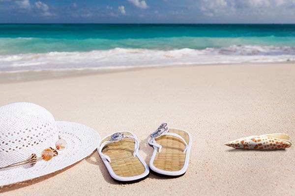 semester, strand, sol