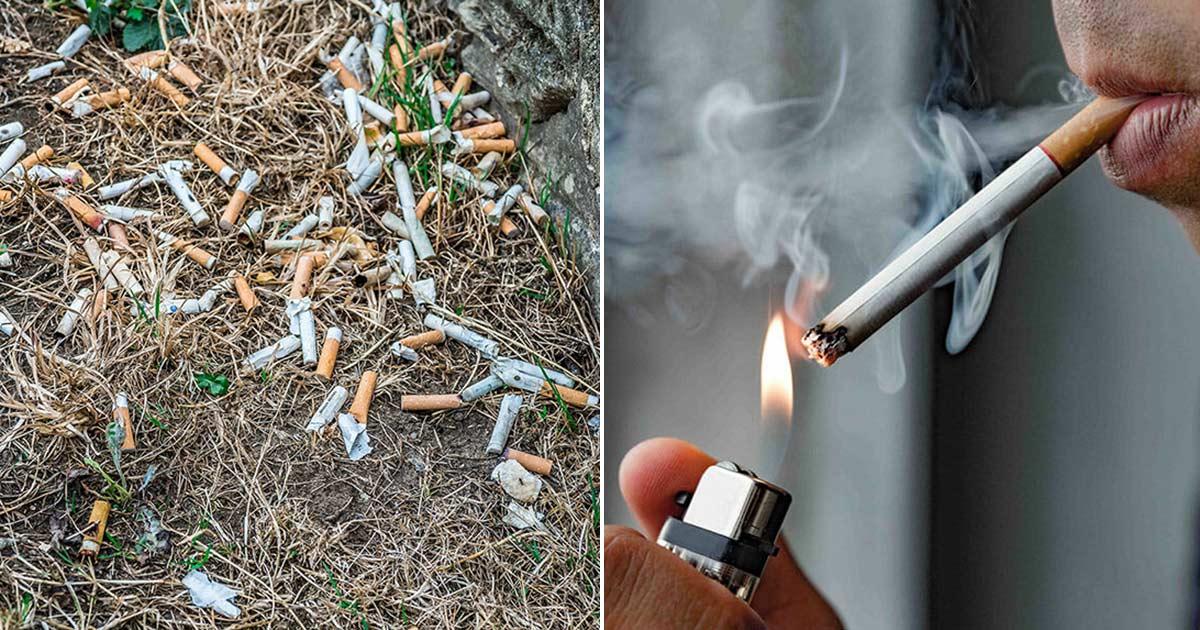 cigarettfimp, böter