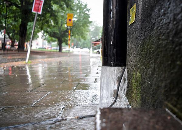 skyfall, regn, översvämning