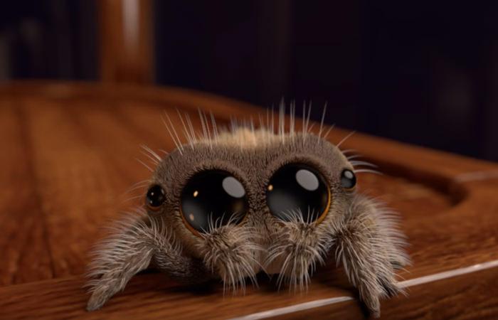 Tak cudownego, animowanego pająka nie widziałeś!