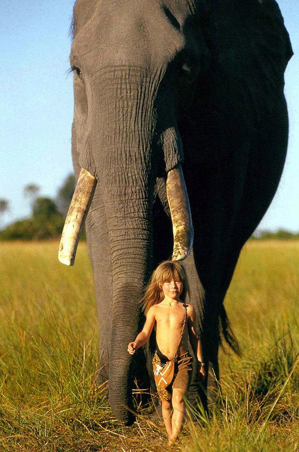 Zdjęcie przedstawia Tippi idącą przed słoniem