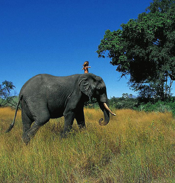 Zdjęcie przedstawia Tippi jadącą na słoniu