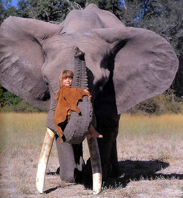 Zdjęcie przedstawia Tippi przytulającą się do słonia