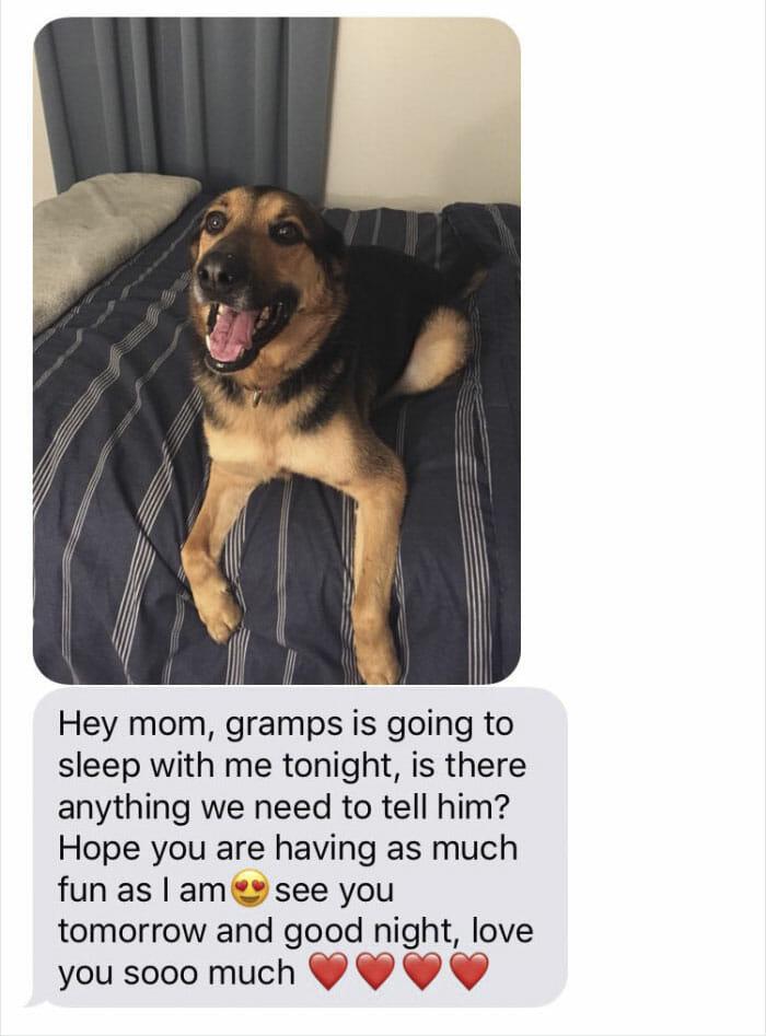Kolejny sms od ojca