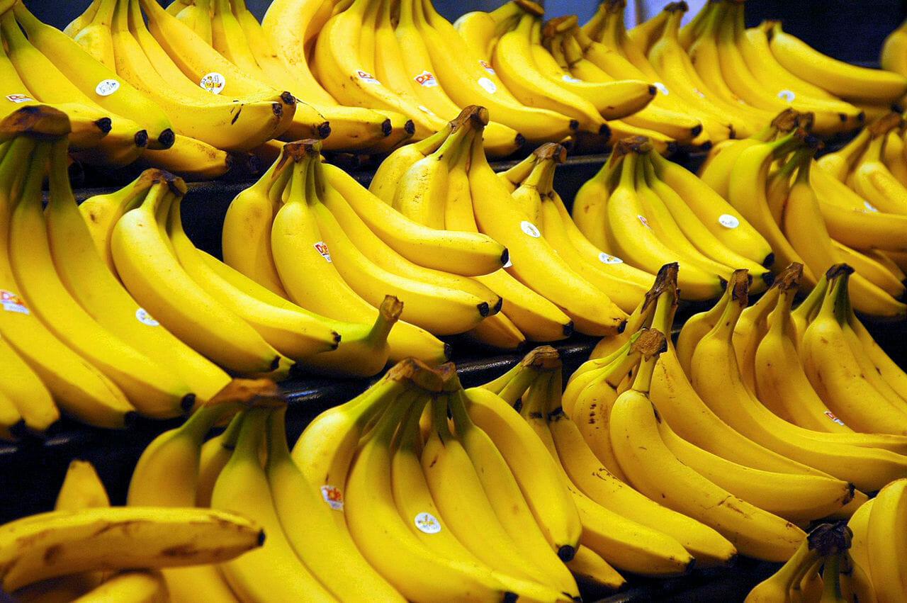 Na zdjęciu znajdują się banany