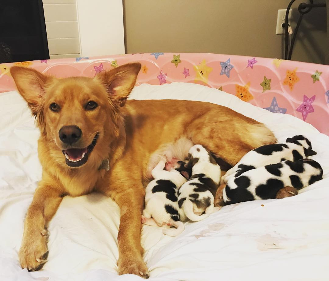 Rosie con i più piccoli