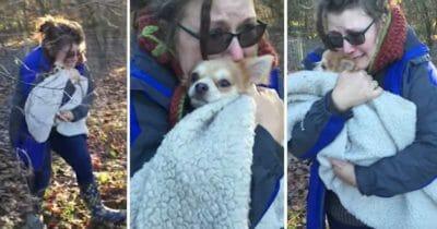 Grafika przedstawia sekwencję zdjęć, na których właścicielka tuli w kocu swojego psa
