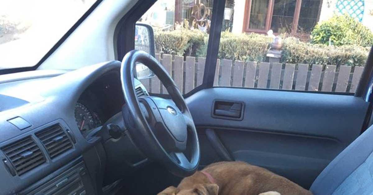 Żona nie spodziewała się znaleźć czegoś takiego na przednim siedzeniu w samochodzie męża