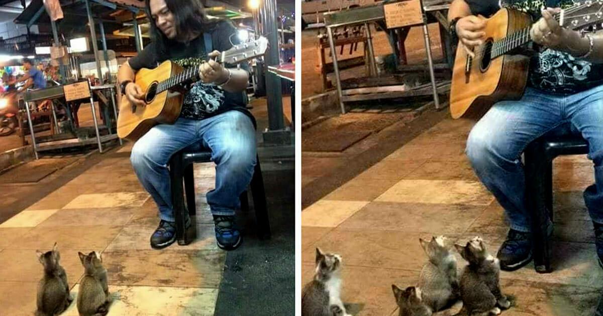 Ignorowany muzyk uliczny ma zamiar skończyć swój występ, ale spogląda w dół i spostrzega cudowną publiczność
