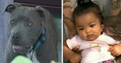 Grafika przedstawia dwa zdjęcia - po lewej Sasha, po prawej Masailah
