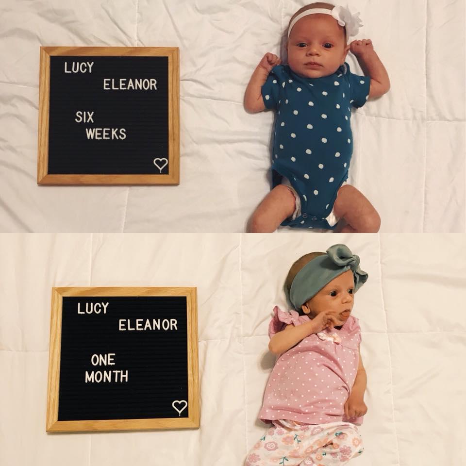 Lycy w wieku 4 i 6 tygodni