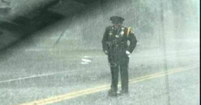 Sharnise stojąca w strugach deszczu i chroniąca żółwia
