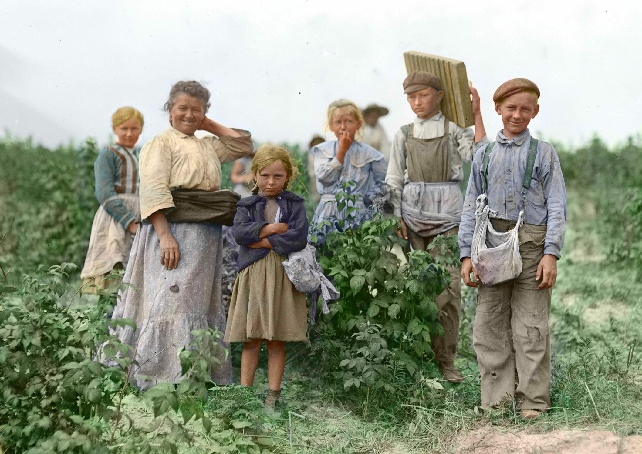 Koloryzowane zdjęcie rodziny zbierającej plony na początku XX wieku