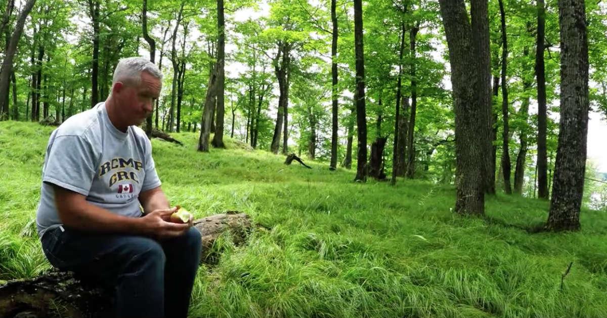 Mężczyzna je w samotności w lesie drugie śniadanie - po chwili zostaje otoczony...
