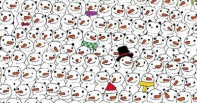 Nikt z moich znajomych nie znalazł rozwiązania. Potrafisz znaleźć pandę wśród bałwanów?