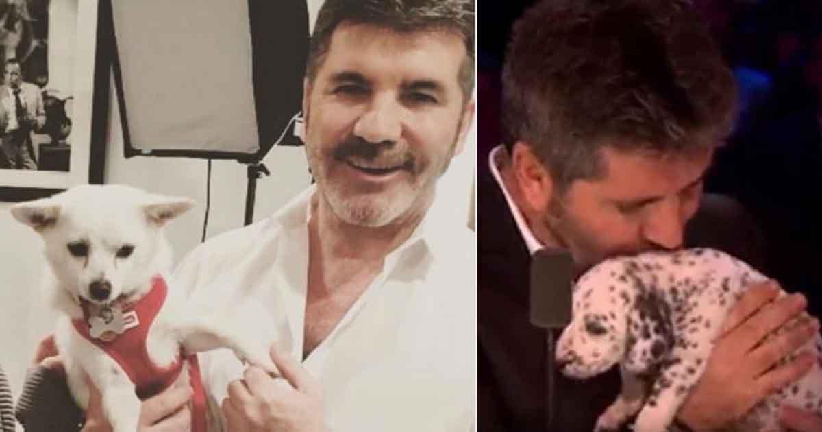 Simon Cowell przeznaczył ponad 30 000 $ na walkę z nielegalnym handlem psim mięsem