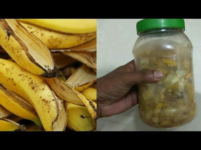 Po przeczytaniu tego już nigdy nie wyrzucisz skórek od bananów - powód jest genialny!