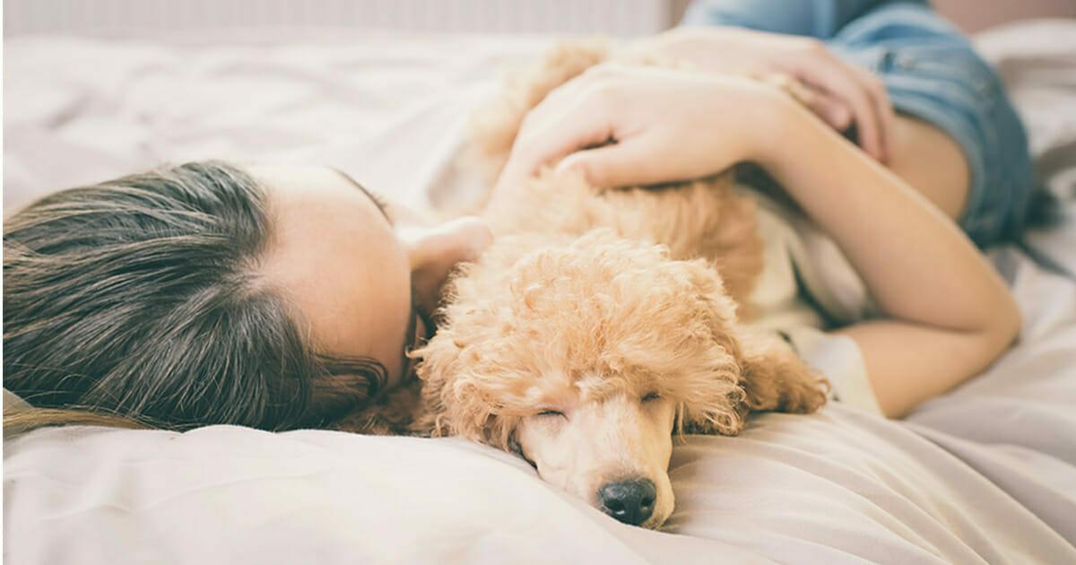Według najnowszych badań kobiety lepiej sypiają ze swoim psami niż partnerami