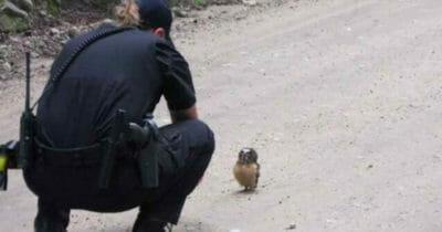 Policjantka zatrzymuje się przed małą sową -zobacz jej reakcję gdy policjantka zadaje jej jedno pytanie