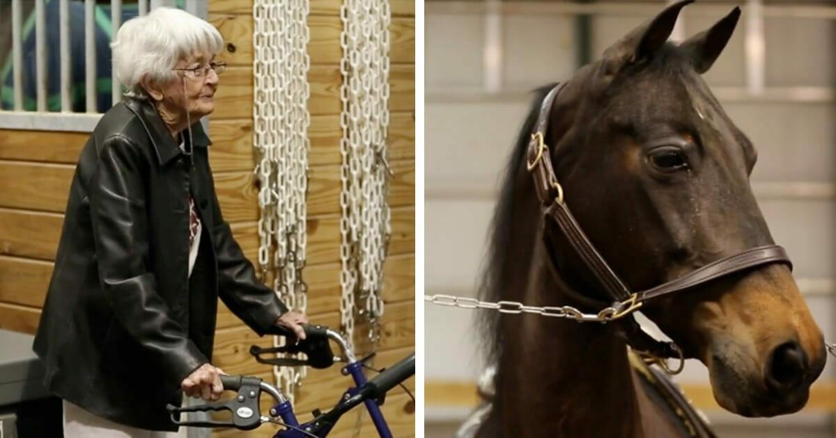 97-latka przychodzi do stajni i ku zaskoczeniu wszystkich wsiada na konia...