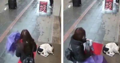 Dwa kadry z nagrania, na którym kobieta pomaga bezdomnemu psu