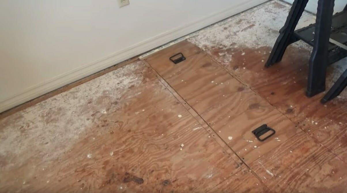 Podłoga, pod którą znajdowało się gniazdo pszczół