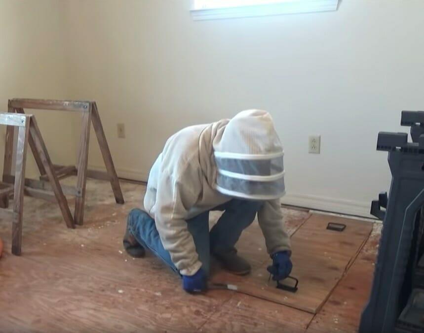 Jeff podczas usuwania gniazda pszczół spod podłogi