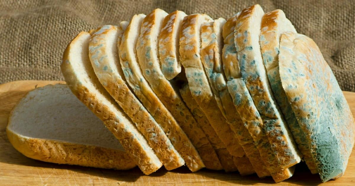 Bochenek spleśniałego chleba