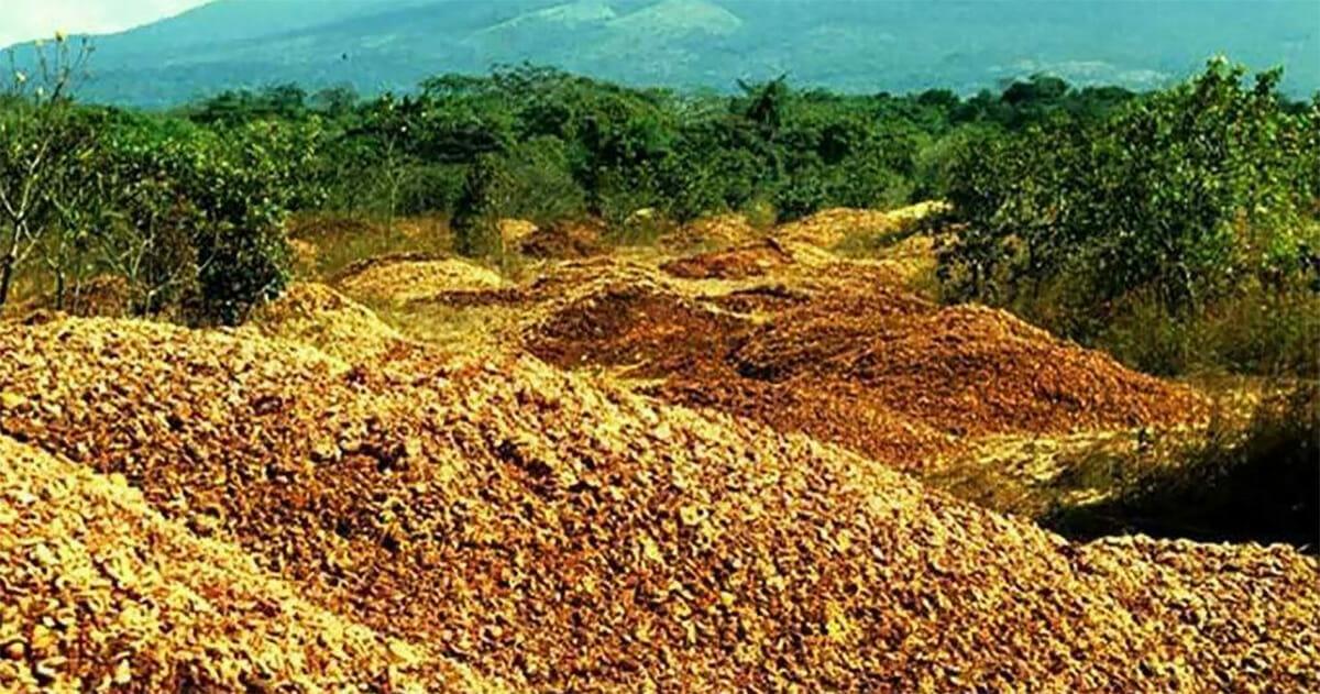 Nieprzebrane sterty skórek pomarańczy wyrzucone w parku narodowym na Kostaryce