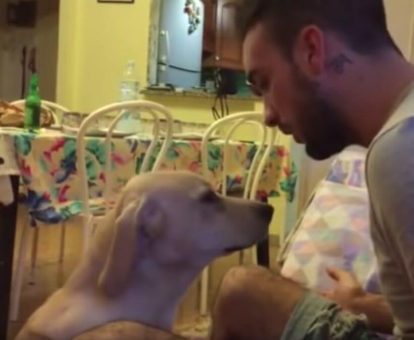 Pies Ettore i jego właściciel Antonio podczas umoralniającej rozmowy