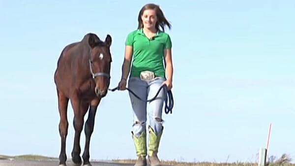 Kelsey i koń
