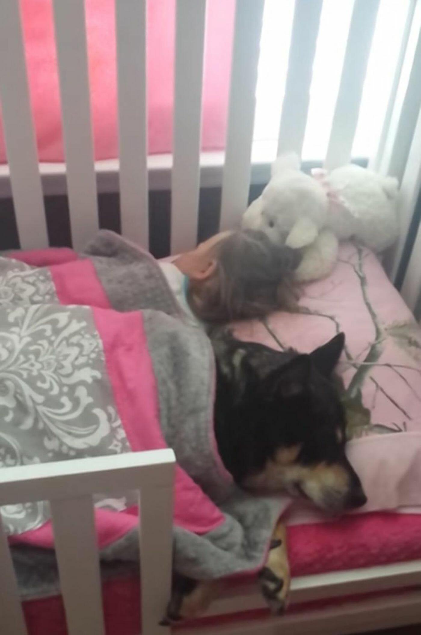 Pies i mała dziewczynka śpią razem w łóżku