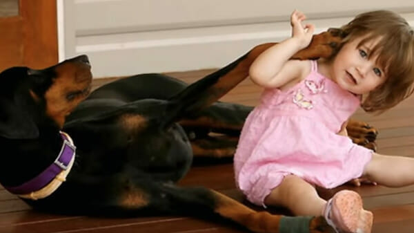 dziecko bawi się z psem