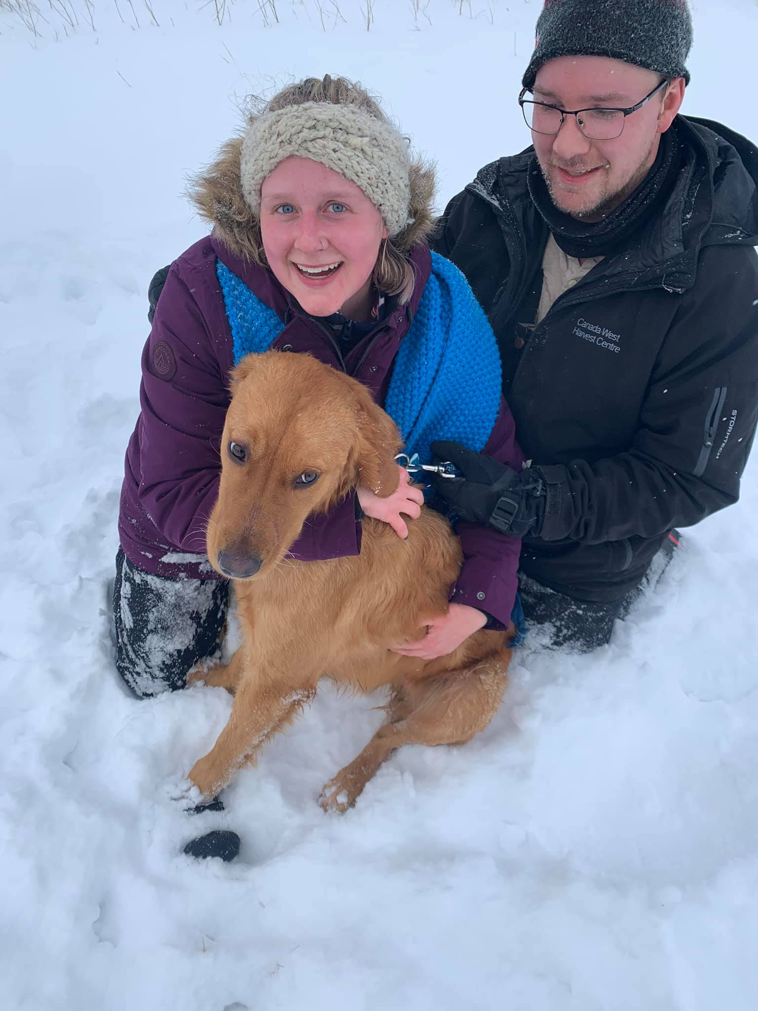 woman, man and dog in the snow