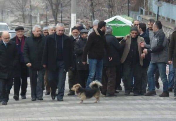 tłum ludzi z trumną i pies