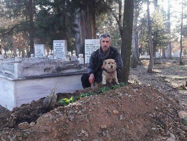 mężczyzna i pies na cmentarzu przy grobie