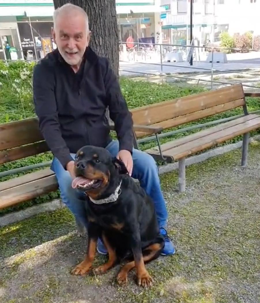 mężczyzna z psem przy ławce w parku